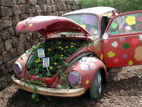 Crazy Beetle – Weirdomatic