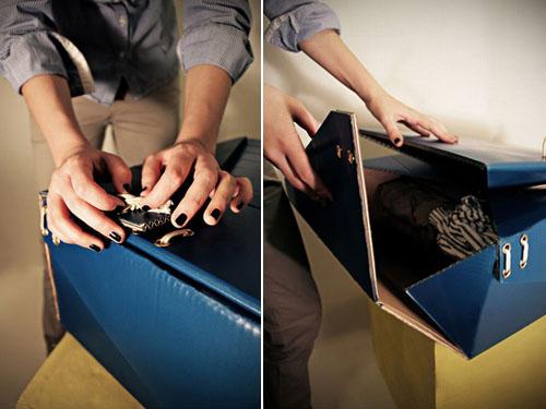 Картонный багаж